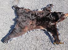 BLACK BEAR RUG 45 X 45
