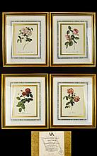 A Collection Of Framed Limited Edition Botanical Prints By The Victoria And Albert Museum Four in total, each housed in yellow gilt frame with Turkish marbled inner mounts. Each certificated to verso and numbered 422 of 7500. Includes 'Common