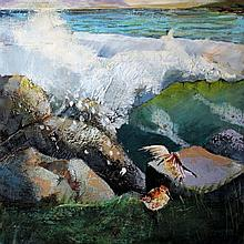 Tom Byrne - Autumn Dymlines, Wicklow Coast