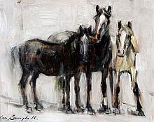 Con Campbell - Wild Horses