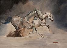 K Hortmann - White Stallions