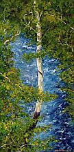Kieran McElhinney - Butlerstown River Cork