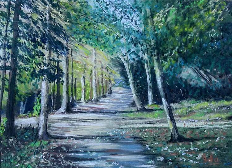 Ida Harshaw - Forest Walk