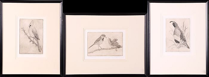Sheridan Oman (1926-c. 1995) Nature Portraits, Lithographs,