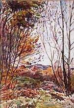 Leslie Cope (1913-2002) Muskingum Co. Woodland, Zanesville, Ohio, Watercolor on paper,