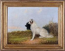 W. Wassen (19th Century) Two Terriers, Oil on canvas,