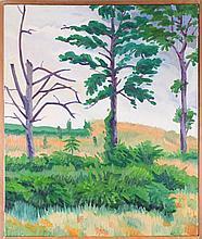 Mark David Gottsegen (1948-2013) C.C. Hidden Valley, 1978, Acrylic on canvas,
