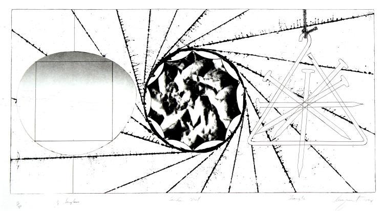 James Rosenquist - Sunglass Lens-Landing Net-Triangle