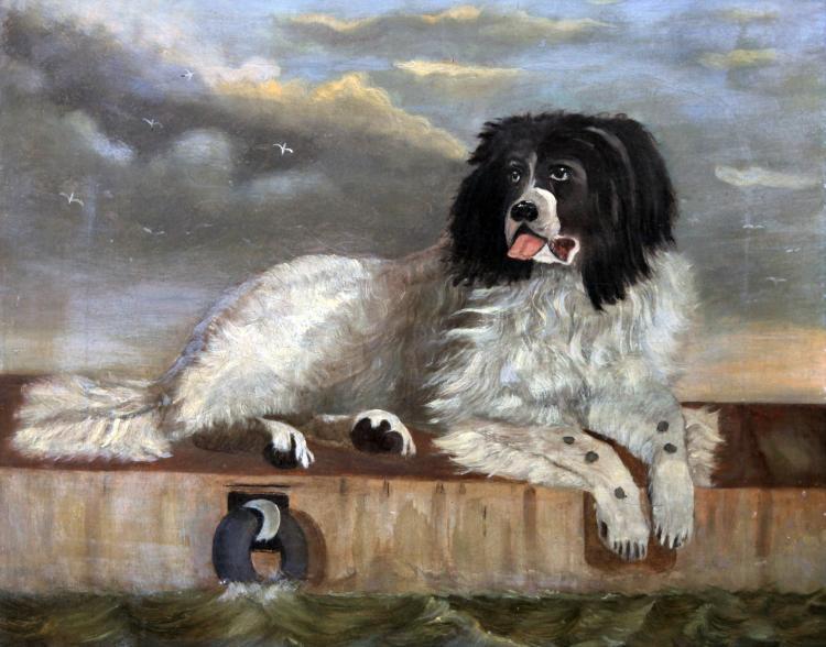 Unknown Artist - Newfoundland Dog Painting c. 1895