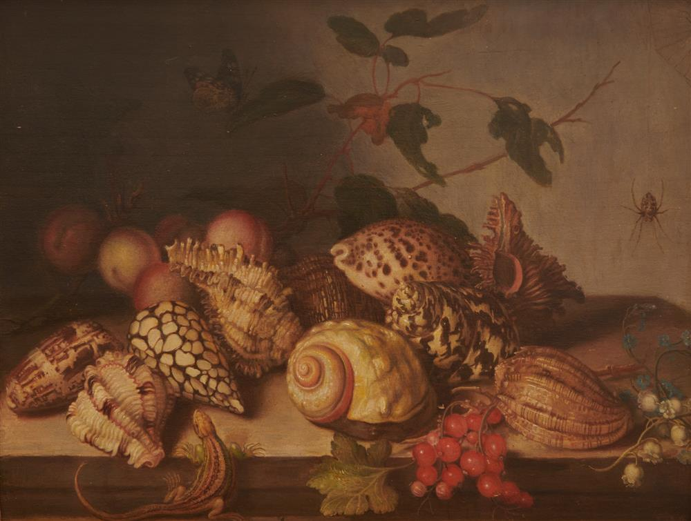 DUTCH SCHOOL, (17th century style), Sill Life with Shells, Fruit, and Insects, oil on panel, 11 5/8 x 14 7/8 in., frame: 19 1/2 x 23 in.