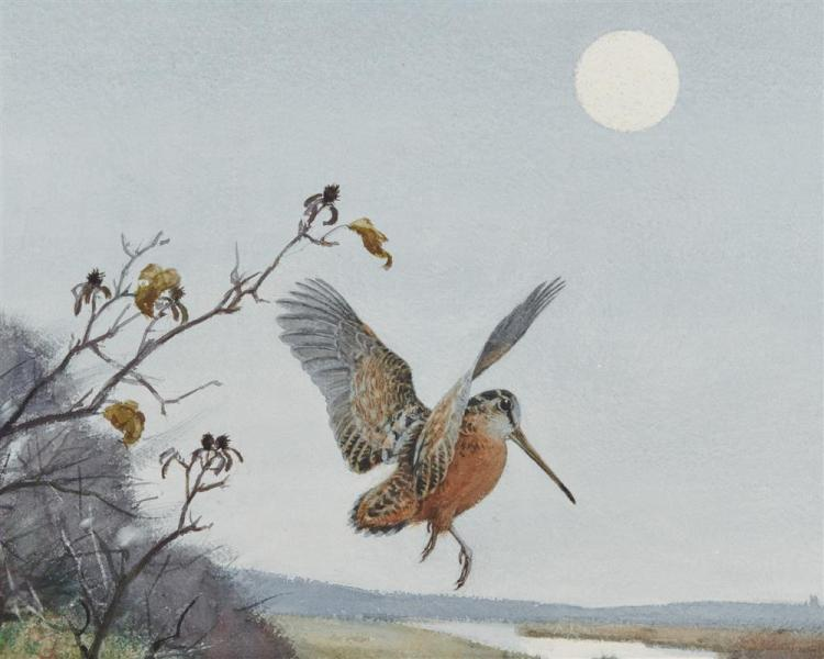 AIDEN LASSELL RIPLEY, (American, 1896-1969), Woodcock with Moonrise, watercolor, sight: 18 1/2 x 29 in., frame: 27 1/2 x 37 1/2 in.