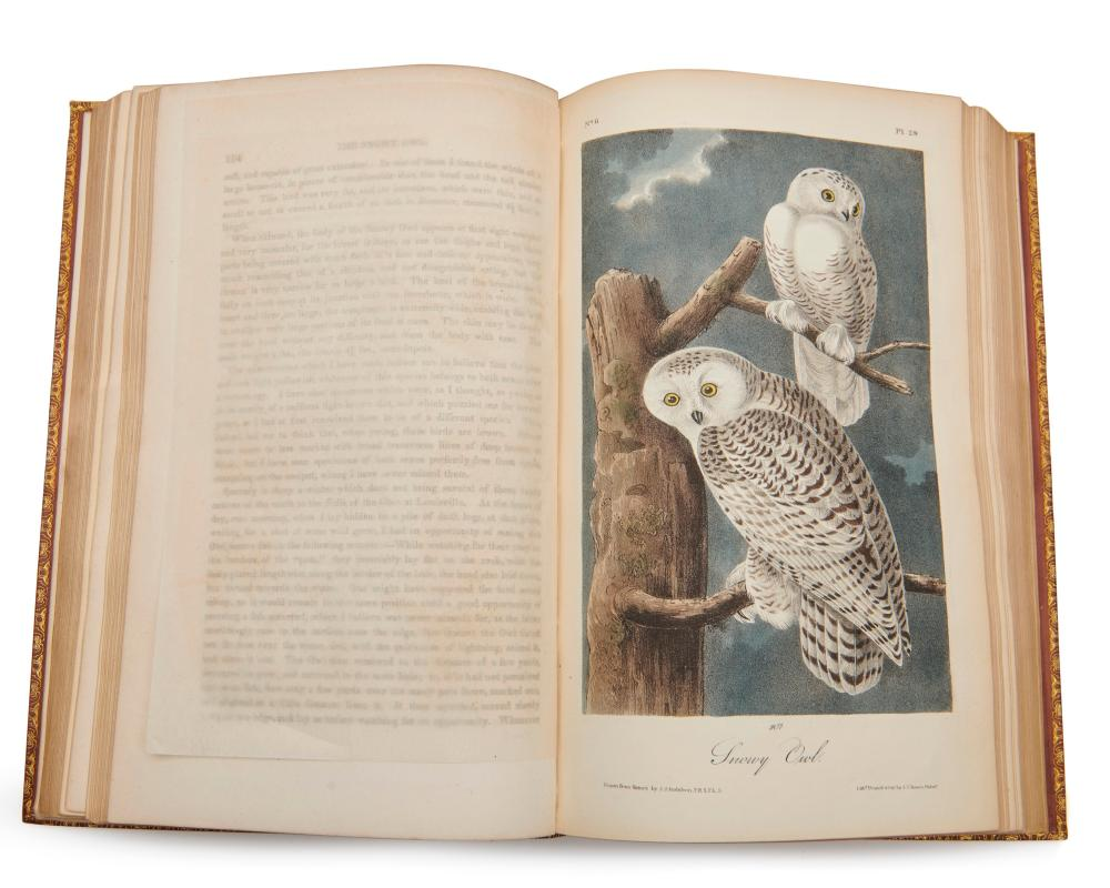 Audubon, John James (1785-1851). The Birds of America, from Drawings Made in the United States and their Territories. New York and Philadelphia: Published by J.J. Audubon and J.B. Chevalier, 1840.