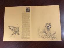 Lot 156: Giant Panda Signed Framed Print by Charles Frace