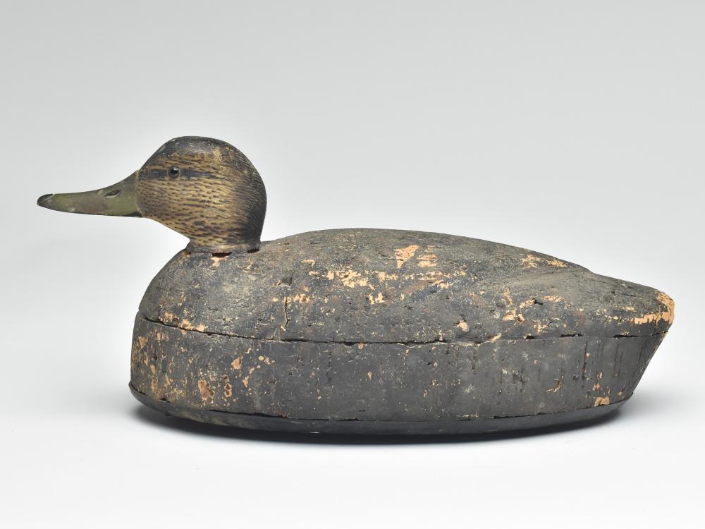 Black duck, Elmer Crowell, East Harwich, Massachusetts, 1st quarter 20th century.