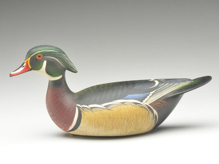 Wood duck drake, Marty Hanson, Hayward, Wisconsin.