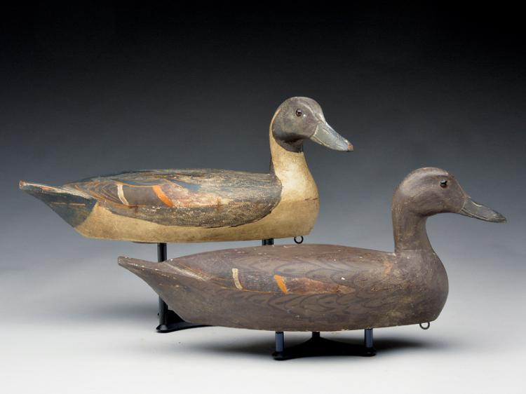 Rigmate pair of pintails, Hec Whittington, Oglesby, Illinois, 2nd quarter 20th century.