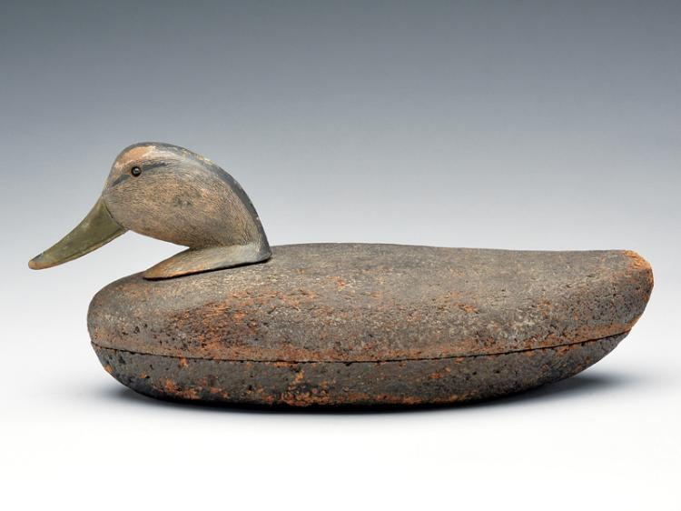 Cork body black duck, George Eberhardt, Stoney Brook, New York.