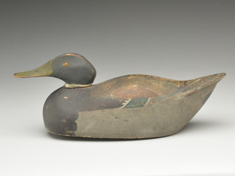 Rare hollow carved mallard drake from the Kankakee marshes, attributed to Herman Trinosky last quarter 19th century.