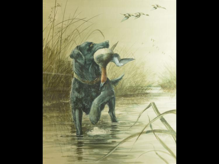 Watercolor of retriever with duck, Nick Klepinger.