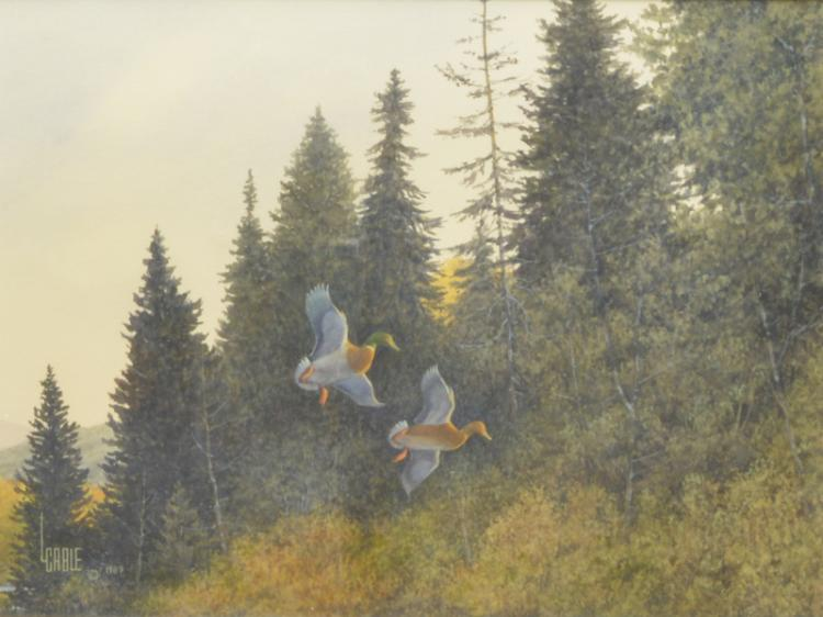 Watercolor of flying ducks, Lee Cable.