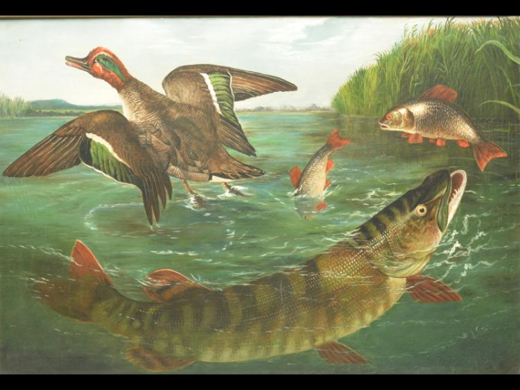 Oil on canvas of fish and teal.