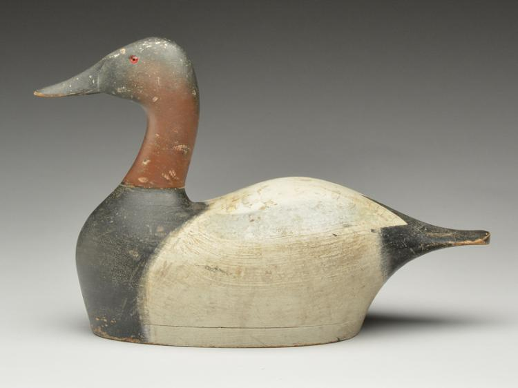 Stately hollow carved canvasback drake, Joseph Sieger, Tustin, Wisconsin.