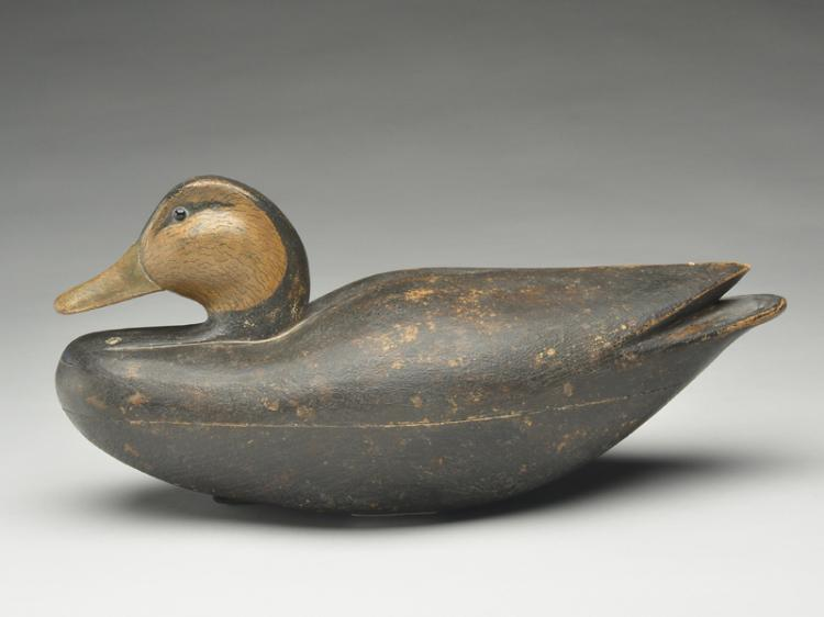 Oversize black duck carved in the Eastern Shore of Virginia tradition, Ira Skees.