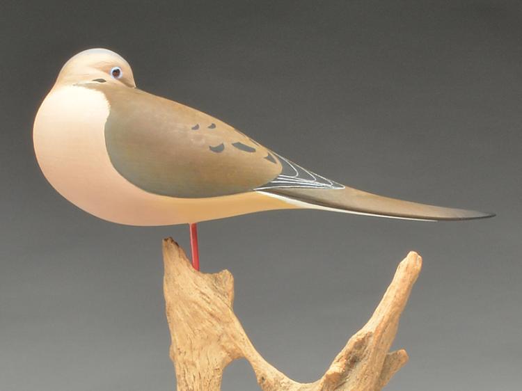 Sleeping mourning dove on wooden base, Joe Wooster, Ashley, Ohio.