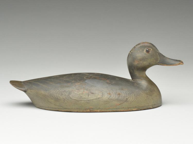 Hollow carved bluewing teal, John R. Wells, Toronto, Ontario.