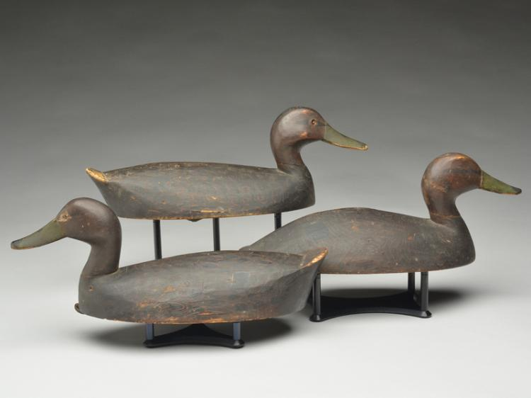 Set of 3 black ducks from the Toronto Harbor area, 1st quarter 20th century.