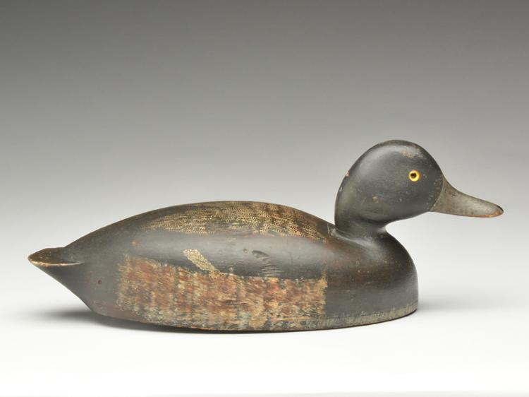 Hollow carved bluebill drake, Will Smith, Bloomfield, Ontario, circa 1920s.