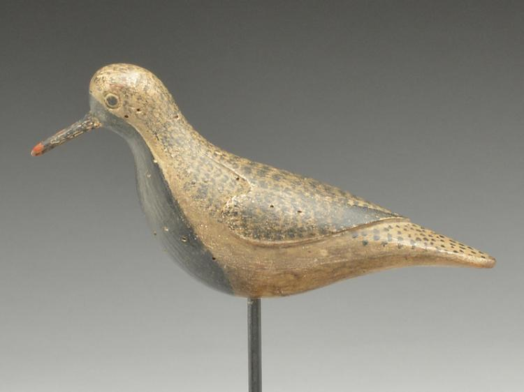 Exceptional black bellied plover, Obediah Verity, Seaford, Long Island, New York, 3rd quarter 19th century.