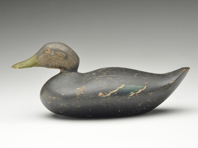 Black duck, Peterson Decoy Factory, Detroit, Michigan, last quarter 19th century.