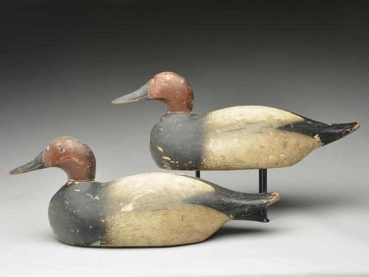 Two special order oversize canvasbacks drakes, Pratt Decoy Factory, Joliet, Illinois.