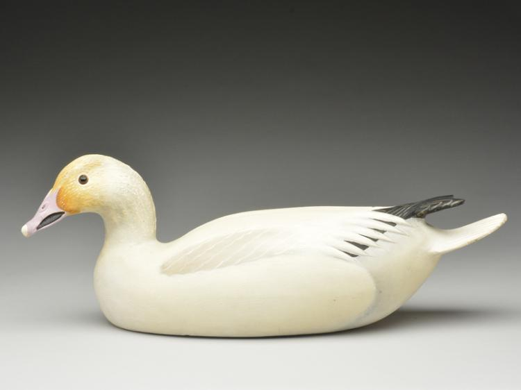 Rare decorative snow goose, Ward Brothers, Crisfield, Maryland.