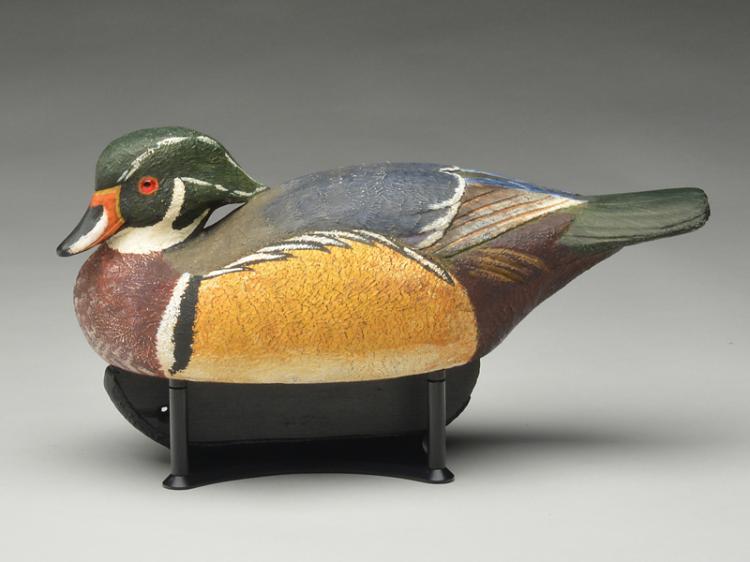 Wood duck drake, Len Carnaghi.