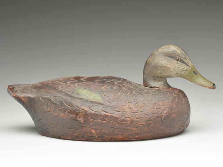 Large black duck, Frank Schmidt, Detroit, Michigan.