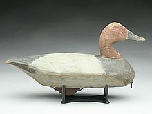 Canvasback drake, similar to the work of Robert Morse, Churches Island, North Carolina.
