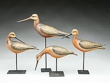Four shorebirds, William Gibian, Onancock, Virginia.