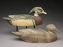 Rare pair of wood ducks, Ben Schmidt, Detroit, Michigan.