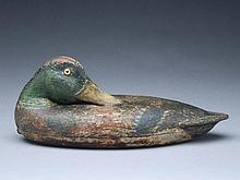 Very rare mallard drake, Fred Allen, Monmouth, Illinois, 1st quarter 20th century.