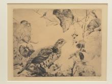 """""""Grouse and Vines"""", Aiden Lassell Ripley (1896-1969)."""
