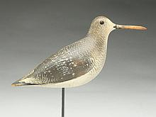 Rare dowitcher in fall plumage, John Dilley, Quogue, Long Island, New York, last quarter 19th century.