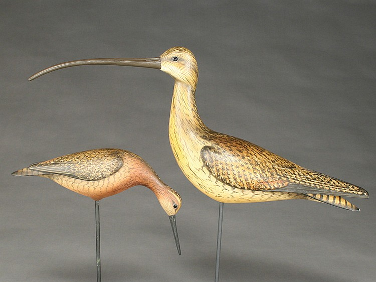 Two shorebirds, William Gibian, Onancock, Virginia.
