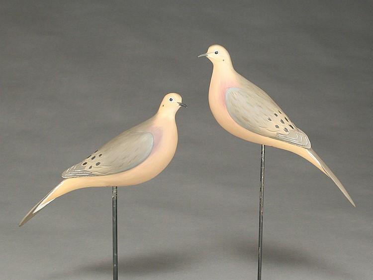 Pair of morning doves, Eddie Wozny, Cambridge, Maryland.