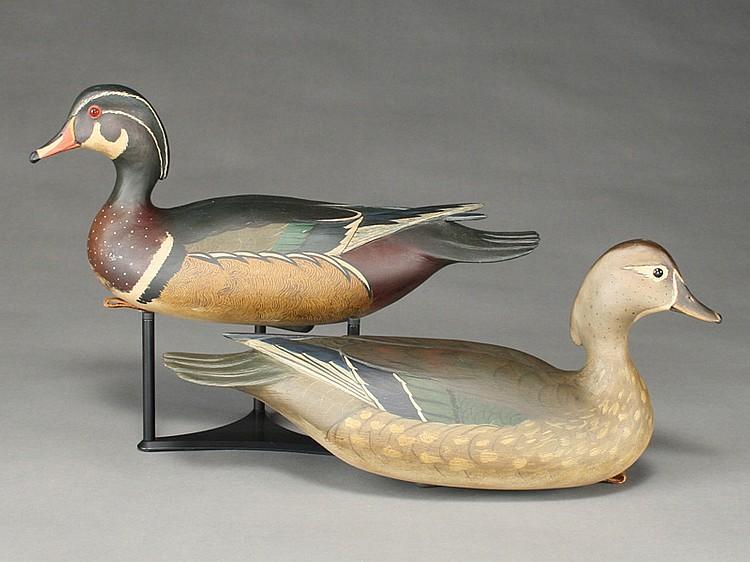 Pair of wood ducks, Bob White, Tullytown, Pennsylvania.