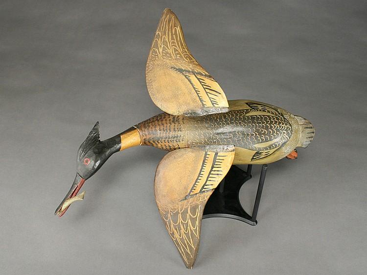 Full size flying merganser drake, Delbert Hudson, Chincoteague, Virginia.