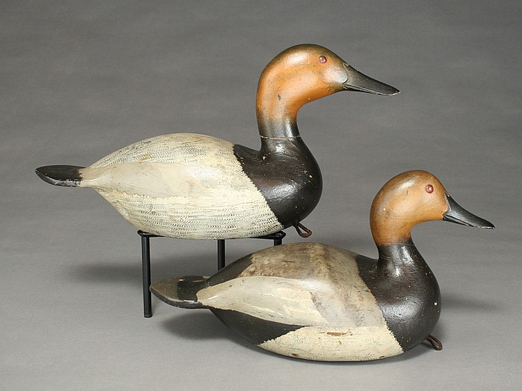 Pair of canvasbacks, Robert Mittlesteadt, Rochester, New York.
