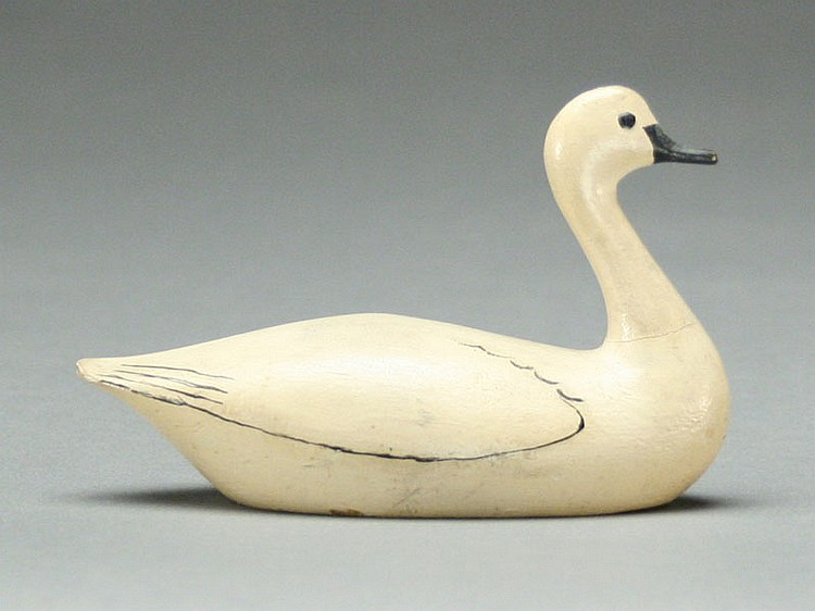 Miniature swan, George Boyd, Seabrook, New Hampshire.