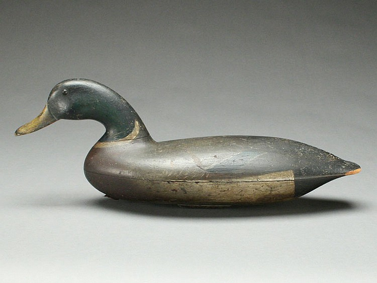 Extremely rare and important swimming mallard drake, John Blair, Sr, Philadelphia, Pennsylvania, last quarter 19th century.